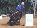 Twist Kokomos Jet Barrel Racing Horse