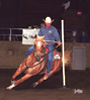 Fire Water Sandy Bar - Pole Bending horse